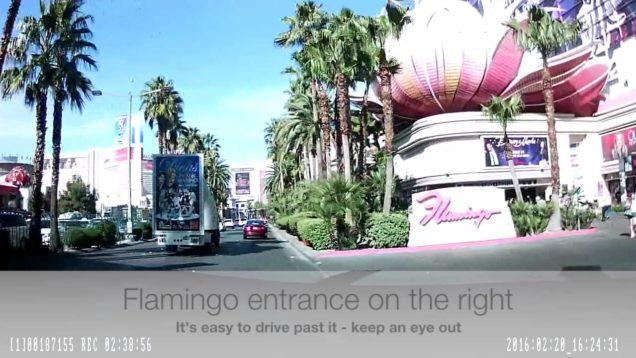 Rideshare Pickup at the Flamingo